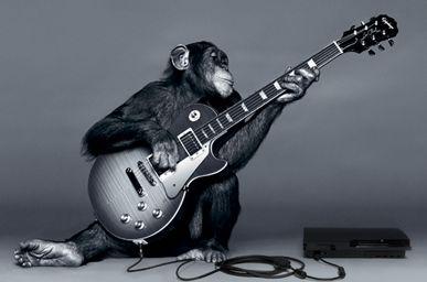 maymun müzik