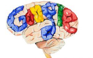 bilişsel yük boşaltma, google ve bellek, google ve beyin