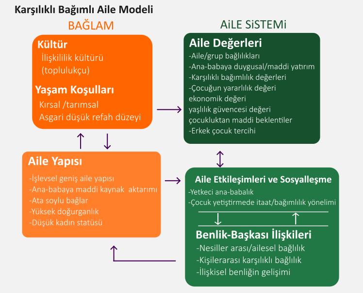aile değişim modeli, karşılıklı aile modeli, bağımsız modeli, çiğdem kağıtçıbaşı